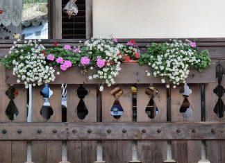 balcone fiorito in inverno